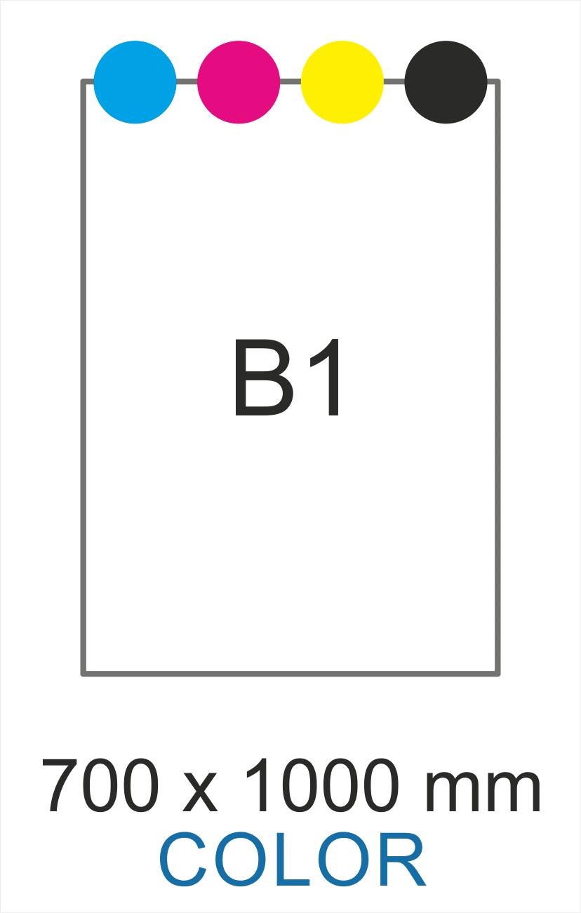 B1 color