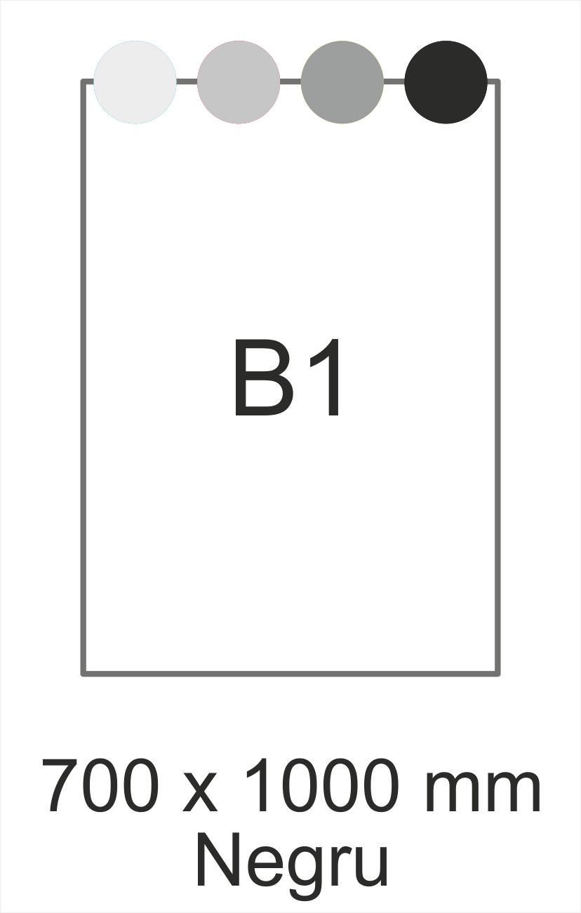 B1 negru