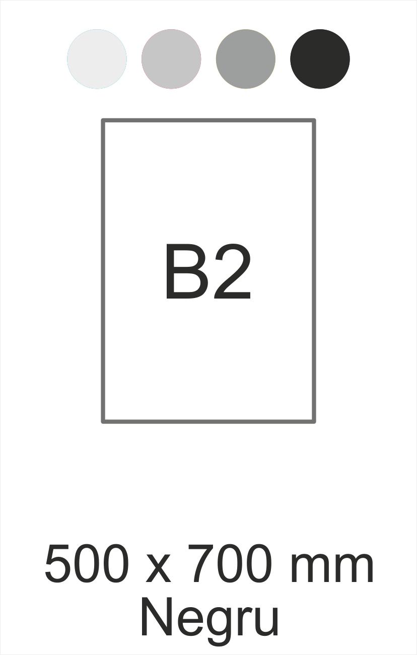 B2 negru