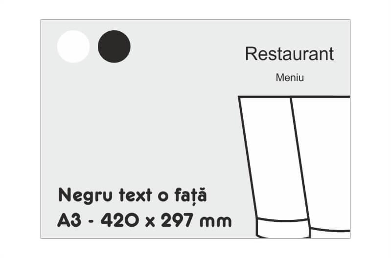A3 negru text